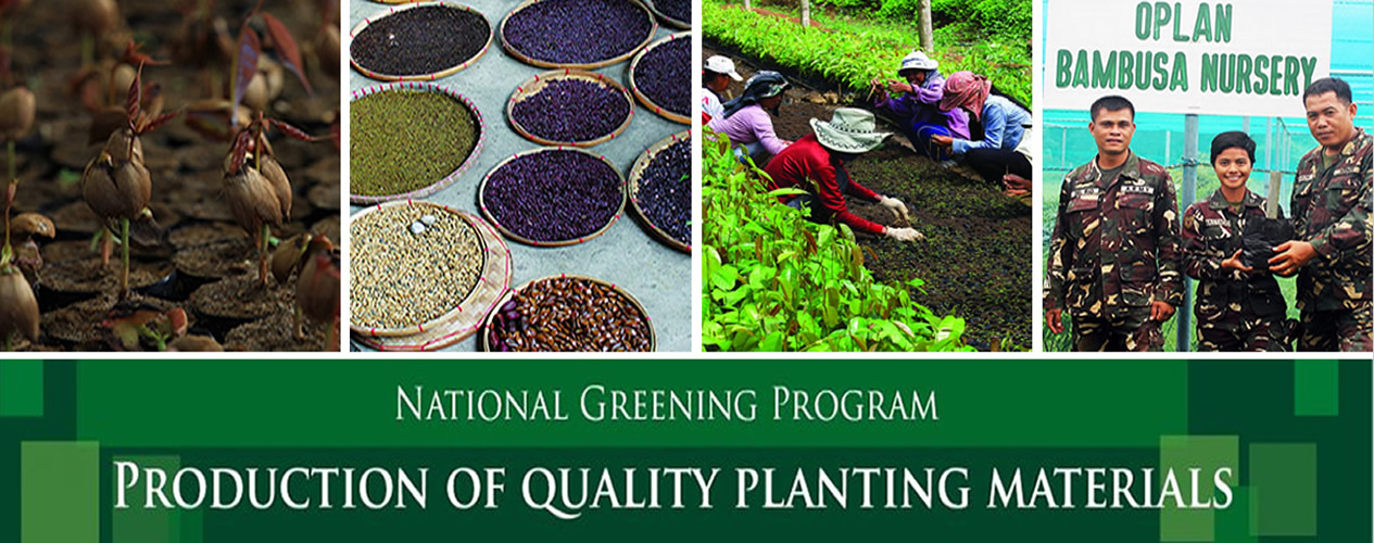 National Greening Program – Production of Quality Planting Materials